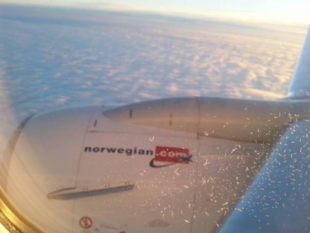 plane-ice