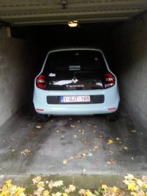 Twingo is its Nameo! le rental